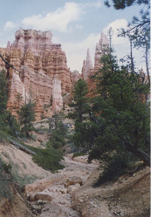 Bryce Canyon Creekbed