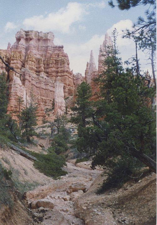 Bryce Canyon Creekbed